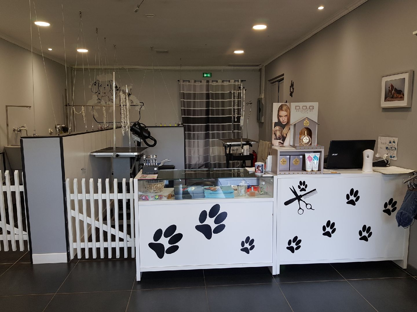 Salon Canin calin